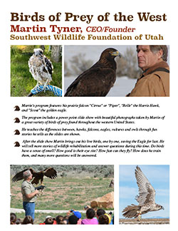 Martin Tyner Birds of Prey Presentation Information